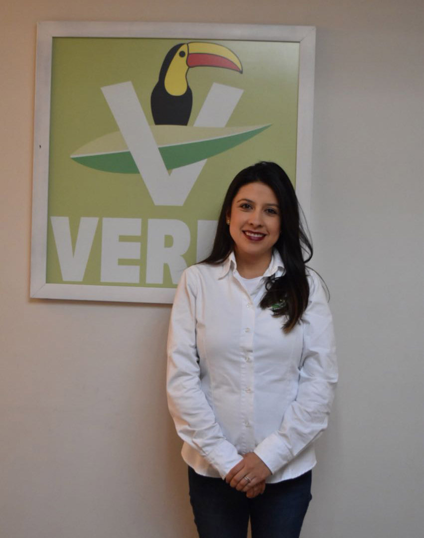 Marcela Villarreal Solís